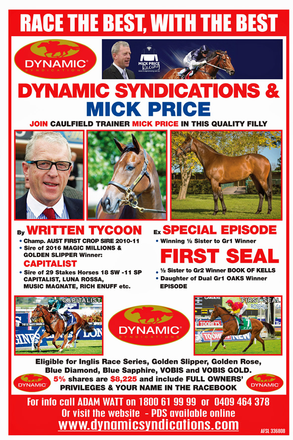 WRITTEN TYCOON x SPECIAL EPISODE 2YO Filly with MICK PRICE