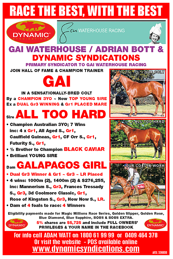 ALL TOO HARD x GALAPAGOS GIRL Chestnut Colt with GAI WATERHOUSE and ... ed4941b19e5